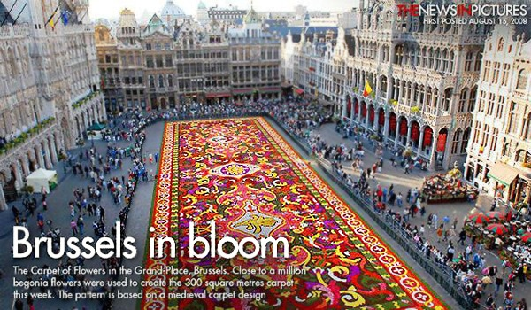 Brussels Biennial Flower Carpet - Nazmiyal