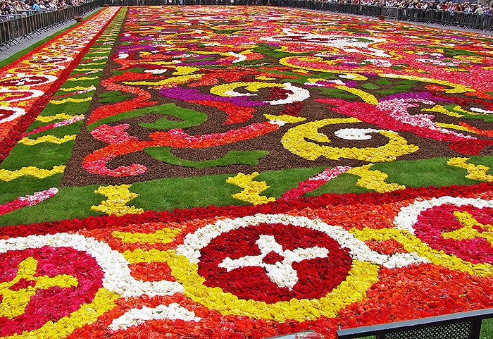 Close Up Picture Of The Brussels Biennial Flower Carpet - Nazmiyal