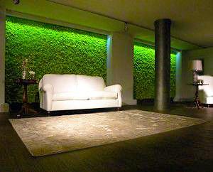 Interior Garden Space Interior Design by nazmiyal