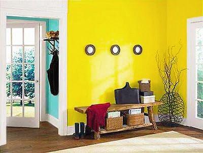Modern Interior Design Colors Nazmiyal