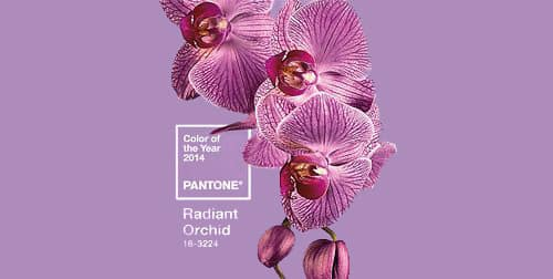 Panton Color Of The Year 2014 - Purple