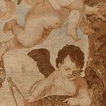 Cupid Mofit