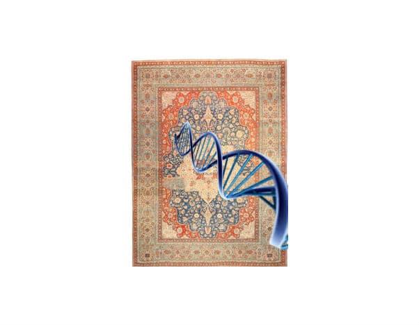 Antique Carpet DNA Nazmiyal