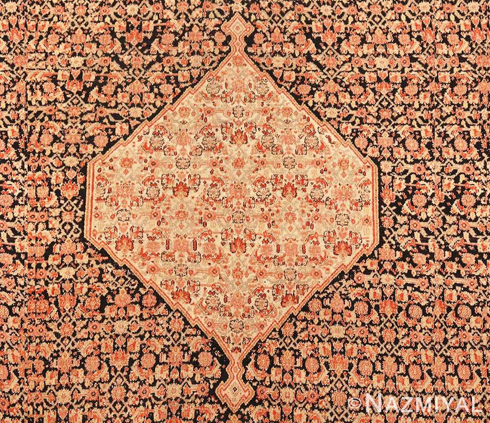 Picture of the Design Details Close up of Antique Persian Senneh Runner Rug 48089