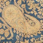 Paisley Design / Boteh Motif by Nazmiyal