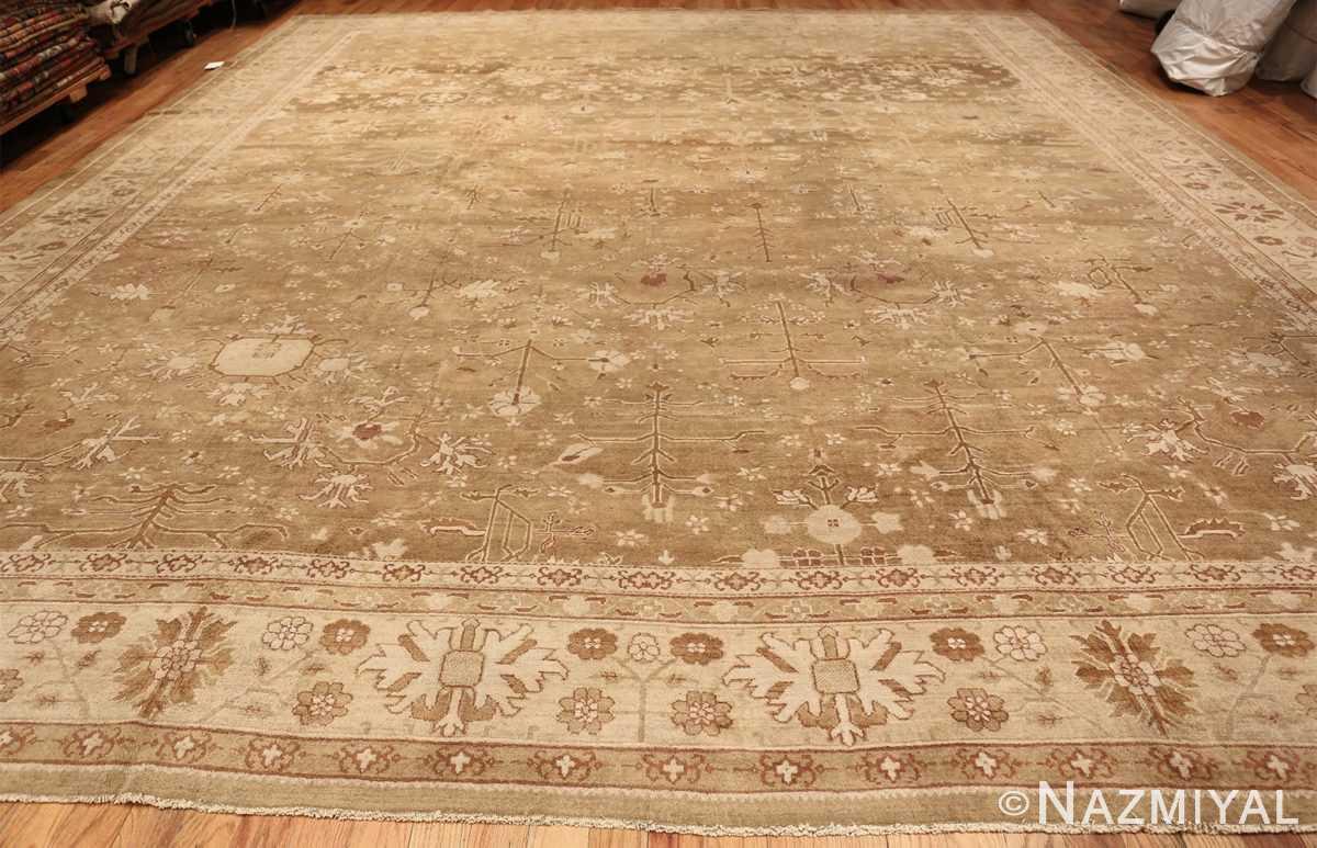 Rare Moss Green Antique Indian Amritsar Rug 50378 Whole Design Nazmiyal