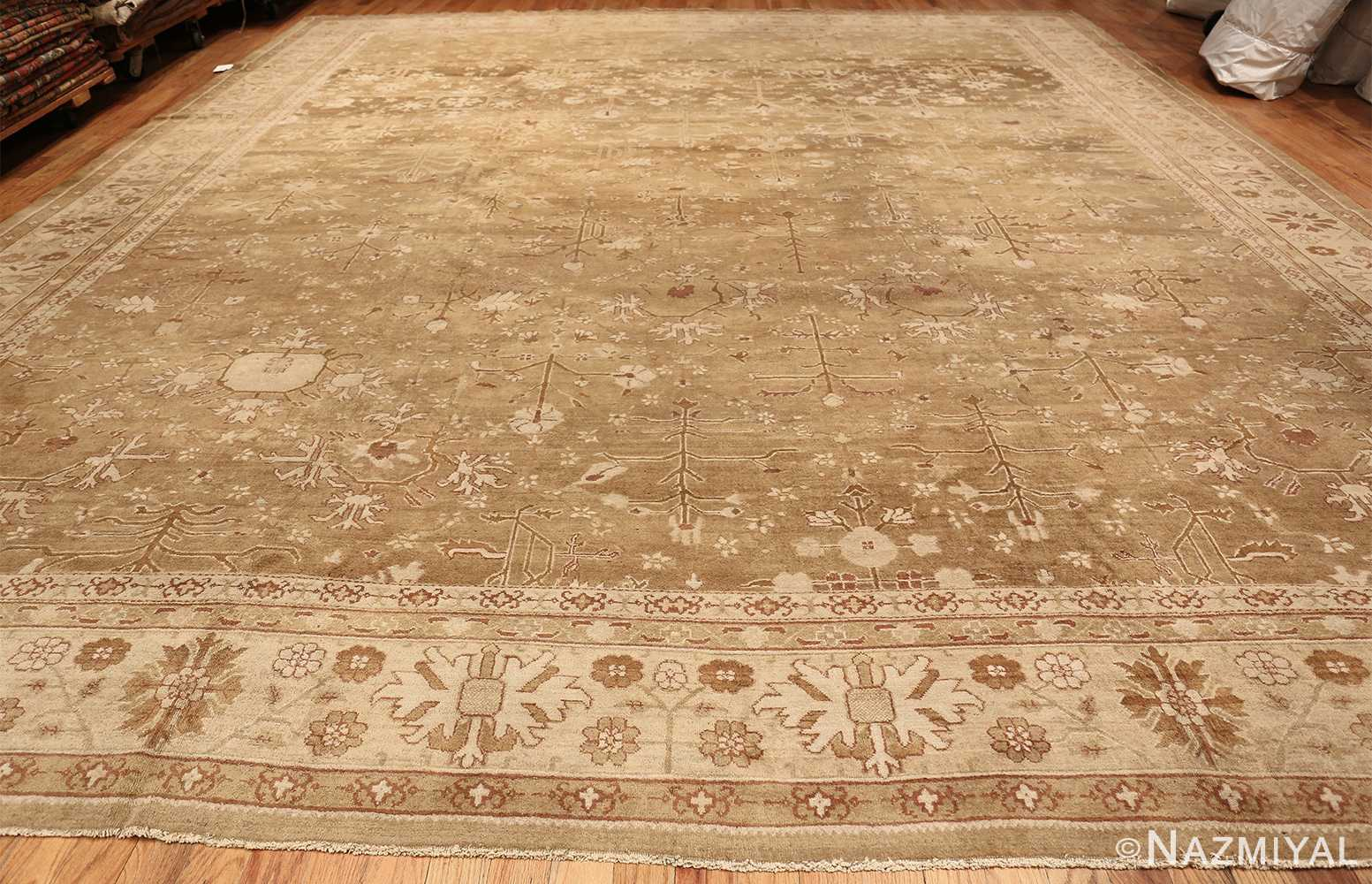 Rare Moss Green Antique Indian Amritsar Rug 50378 Whole Design Nazmiyal