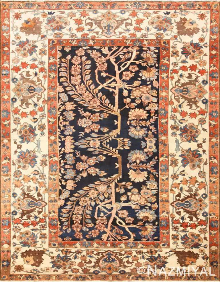 Unusual and Rare Antique Tribal Persian Malayer Rug 48879 Nazmiyal