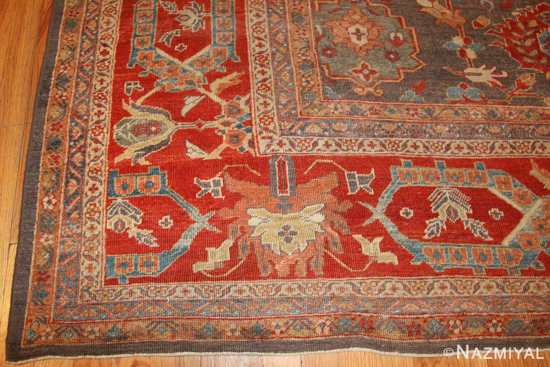 breathtaking gray persian sultanabad rug 49032 corner Nazmiyal