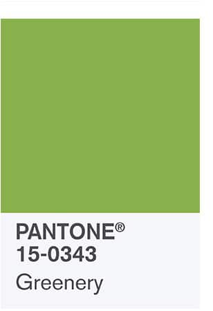 Pantone color of the year: Greenery. green antique rugs.
