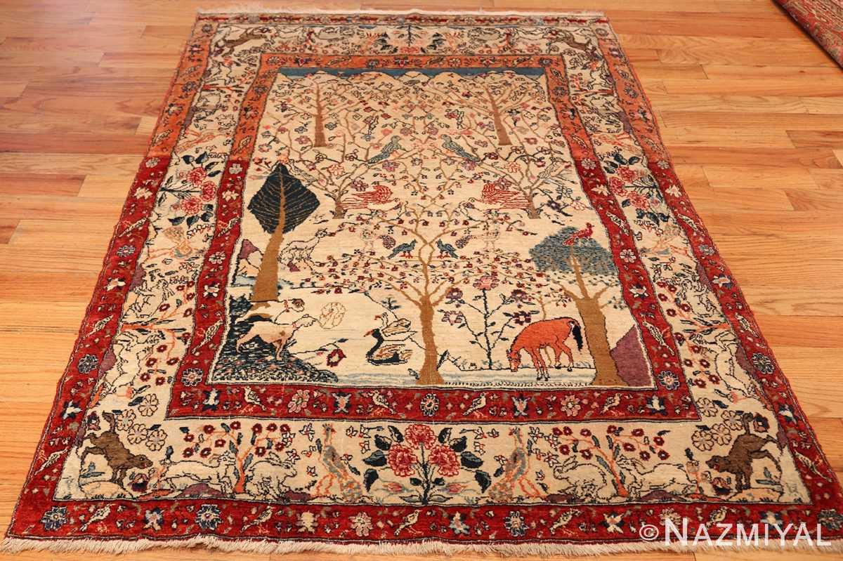 antique animal motif tehran persian rug 49303 fullsize Nazmiyal