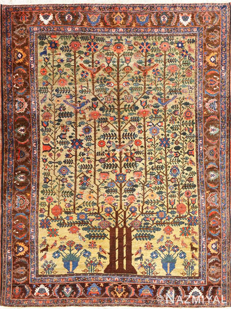Tree Of Life Rug 48616 Nazmiyal Rugs