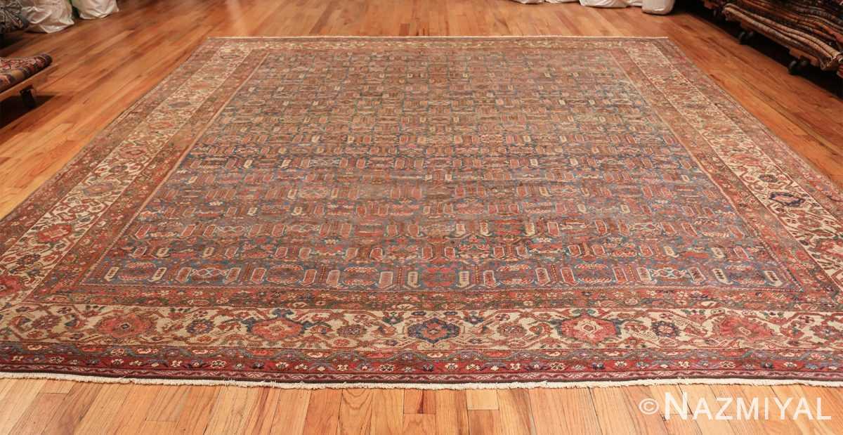 square antique bakshaish persian rug 49656 whole Nazmiyal
