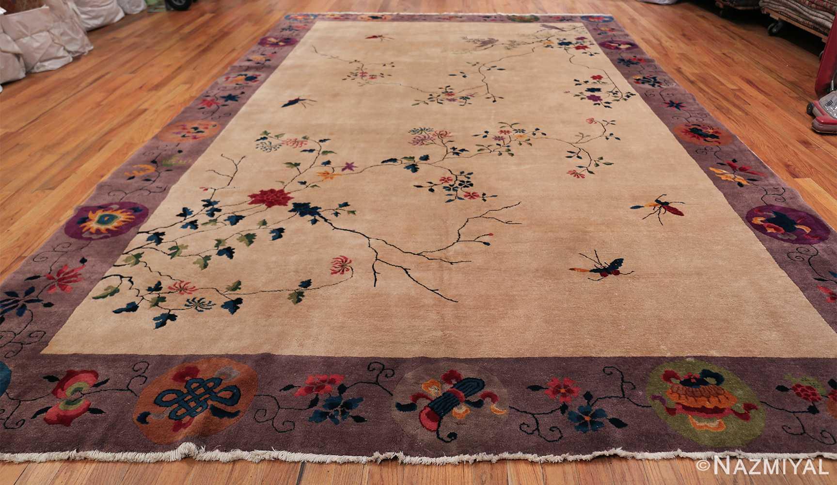 Large Antique Chinese Rug 49909 Whole Design Nazmiyal