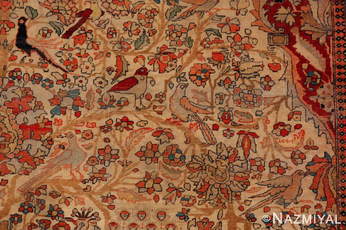 A detailed bird flower picture of the antique tree of life persian mohtashem kashan rug #70069 from Nazmiyal Antique Rugs NYC