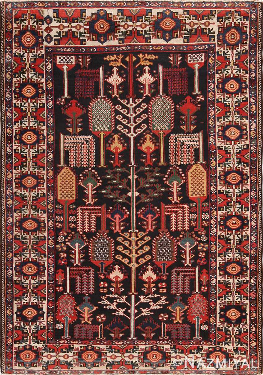 Full view Antique Persian Bakhtiari rug 70125 by Nazmiyal