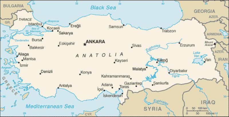 Anatolian Rugs | Carpets from Anatolia | Nazmiyal NYC