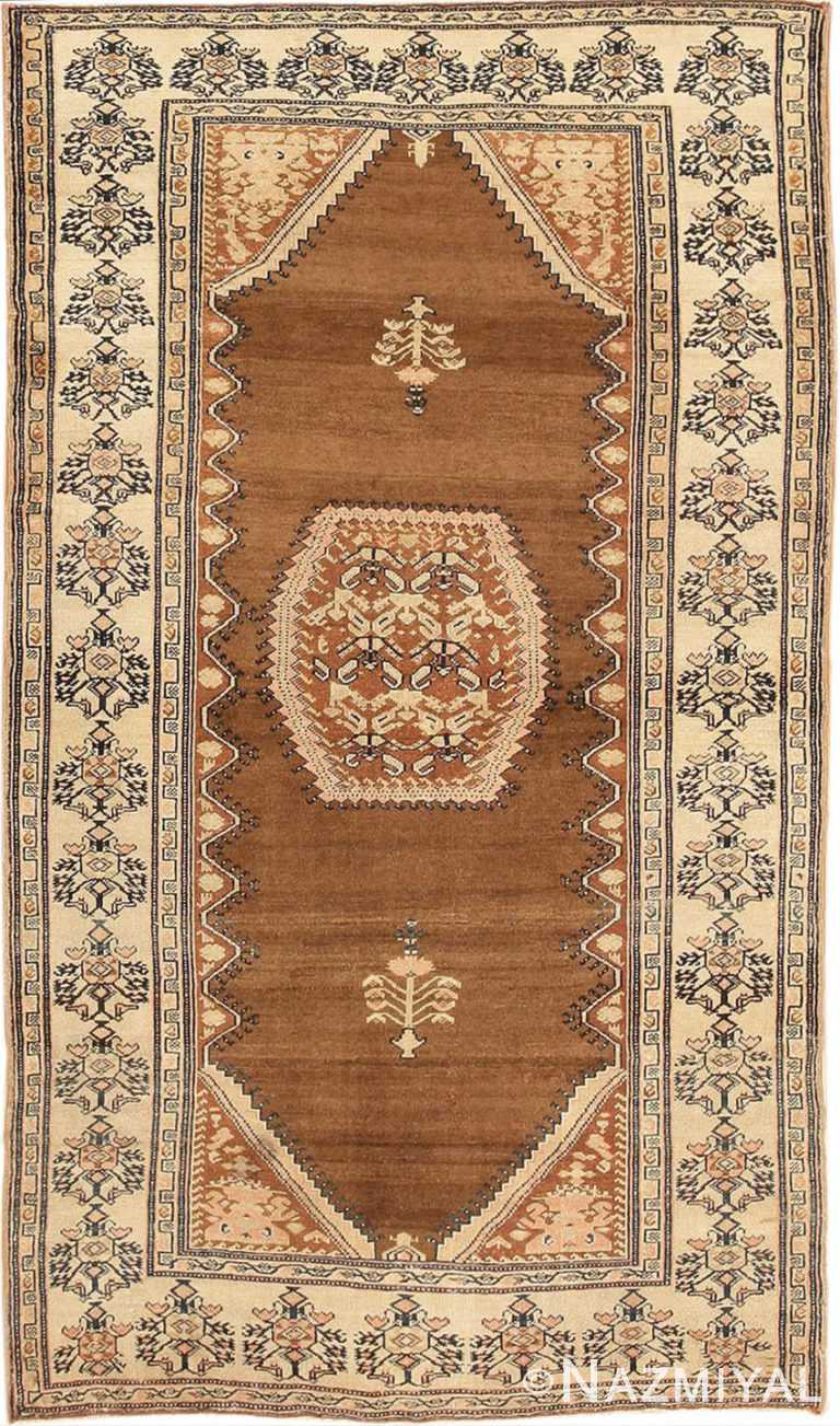Small Size Tribal Antique Persian Malayer Rug #3041 by Nazmiyal Antique Rugs
