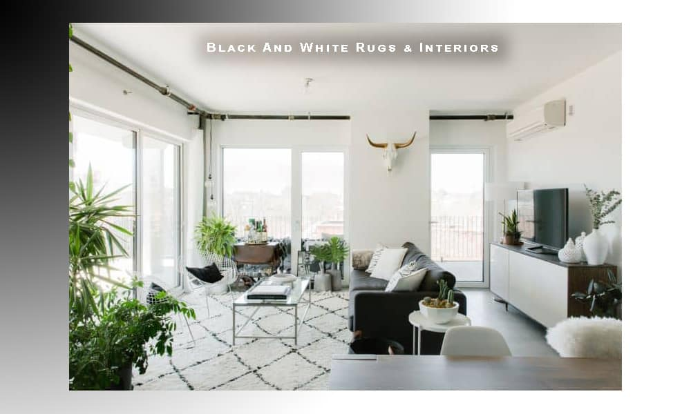 Black And White Rugs Black And White Interior Design By Nazmiyal